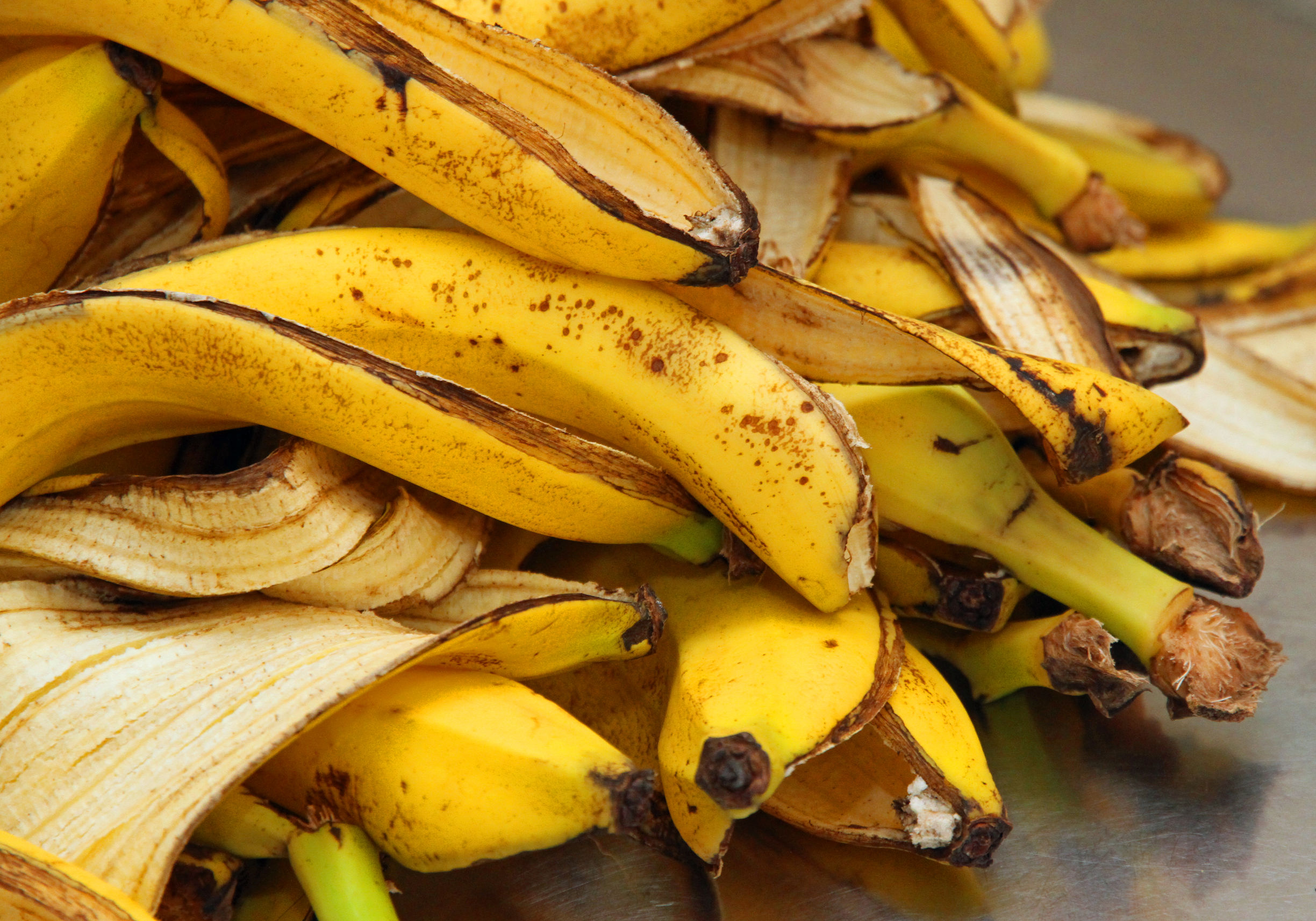 Image result for coaja banana muscata
